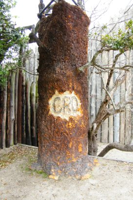 Lost_Colony_Tree_-_Fort_Raleigh_National_Historic_Site_-_Stierch
