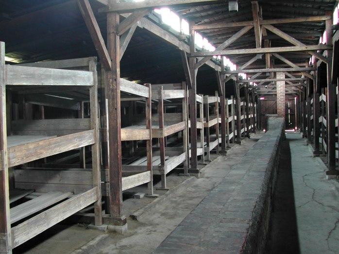 Auschwitz_Birkenau_German_Nazi_Concentration_and_Extermination_Camp_(1940-1945)-107820.jpg